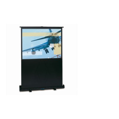 "Экран Projecta LiteScreen 98х168см (65"") Matte White High Gain портативный 16:9 [10530192 ]"